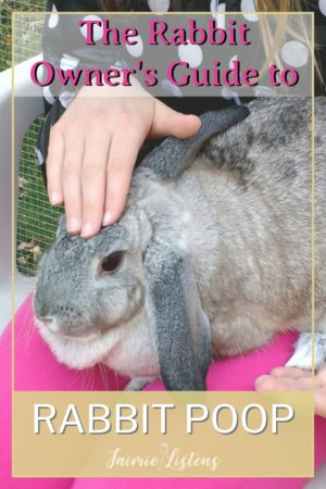 The Scoop on Poop: What You Need to Know About Rabbit Doody - Jaimie Listens: Rabbit poop is unique and useful for both owner and bunny.